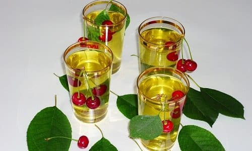 Отвар из листьев и плодоножек вишни пьют небольшими порциями в течение дня. Это обеспечивает быстрое опорожнение инфицированного мочевого пузыря